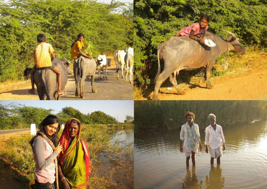 Chandana Rao  North Karnataka