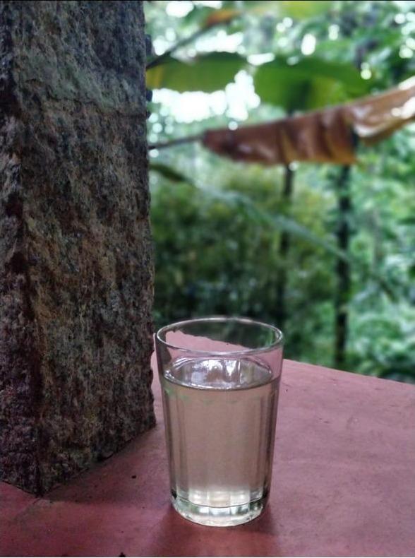 gandhari chilly tea